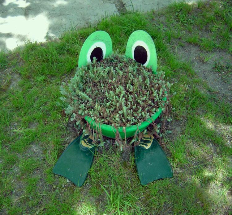 Озеленение участка своими руками фото в доу